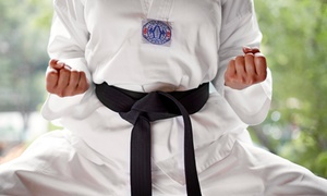 Yong-In Martial Arts: One Month of Taekwondo or Self-Defense Classes at Yong-In Martial Arts (Up to 62% Off)