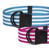Adidas Women's D-Ring Webbing Belt (2-Pack)