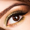 Up to 51% Off Eyelash and Brow Enhancements