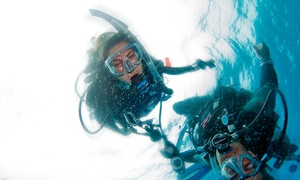 Adventure Scuba: Up to 52% Off Discover Scuba for 1 or 2  at Adventure Scuba