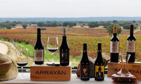 Visita guiada a bodega con cata de vino y aperitivo para 2, 4 o 6 personas en Arrayán (hasta 55% de descuento)