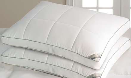 kathy ireland Double Down Pillow (2-Pack) from $44.99–$54.99