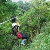 Up to 54% Off Segway Tour and Ziplining in Hakalau