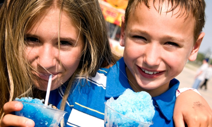 The Freezing Frog - Fort Worth: $6 for $12 Worth of Shaved Ice — The Freezing Frog