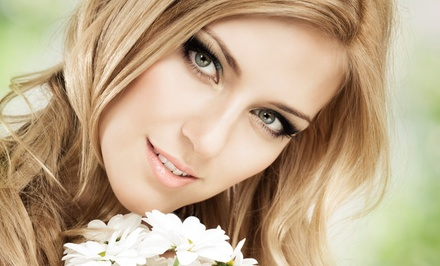 Blow-Dry with Partial or Full Highlights at Self Image Salon (Up to 63% Off)