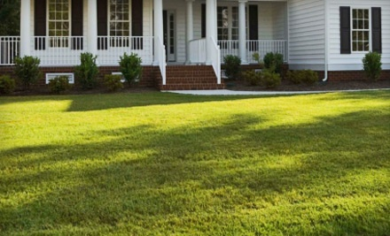 Lawn Aeration for Up to 6,000 Square Feet (a $78 value) - Harvest Time Lawn Services in
