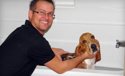 My Pet's Butler - My Pet's Butler in