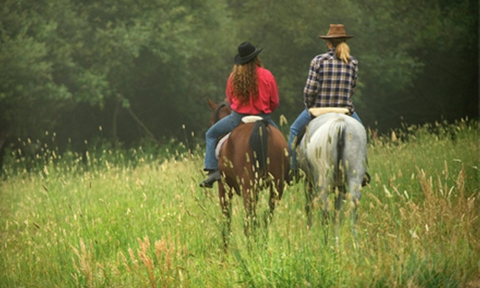 Yorktown Stables - 3: Riding Lesson and Guided Trail Ride for Two, or Four or Eight Weekly Group Lessons at Yorktown Stables in Yorktown