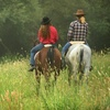 Up to 53% Off Horseback Ride or Lessons in Yorktown