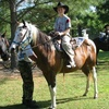 Half Off Horseback Trail Ride in Ridgeway