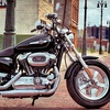 Up to 58% Off Harley-Davidson Rental in Metairie
