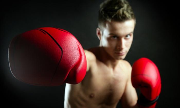 LA Boxing Ashburn - Broadlands: 10-Class Punch Card with Boxing-Gloves Option at LA Boxing Ashburn (Up to 76% Off)