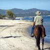 51% Off Scenic Horseback Ride in Granite Bay