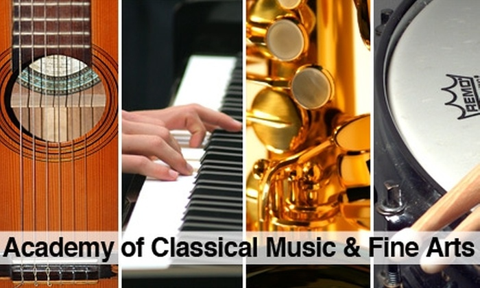 Academy of Classical Music & Fine Arts - Sun Garden Acres: $15 for Three Music Lessons at Academy of Classical Music & Fine Arts ($30 Value)