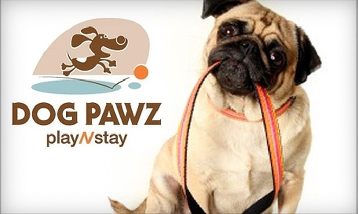 Dog Pawz playNstay - Leawood: $35 for Two Overnight Passes or Four Daycare Passes at Dog Pawz playNstay in Leawood (Up to $80 Value)