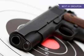 Protection and Security Services Inc.: Permit-to-Carry Course for One or Two at Protection and Security Services (Up to 55% Off)