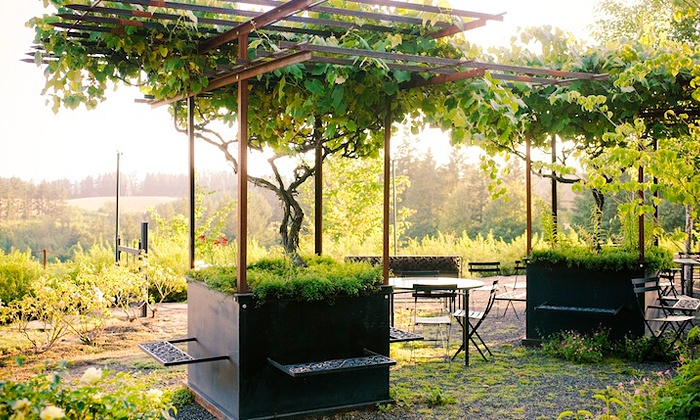 Garden Vineyards - Hillsboro: $22 for a Picnic Meal for Two at a Festival at Garden Vineyards ($40 Value)