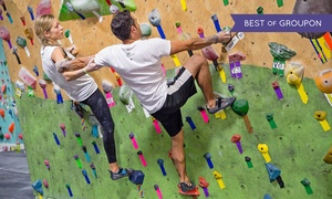 Brooklyn Boulders: Day Pass or Ropes Class at Brooklyn Boulders (51% Off)