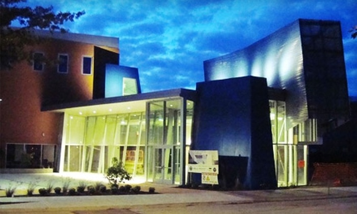 Erie Art Musuem - Erie: One-Year Membership to Erie Art Museum. Four Options Available.