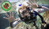 Frogg Pond Dive - Highland Park: $34 for a Discover Scuba, Snorkeling, or Dive-Refresher Course at Frogg Pond Dive in Highland Park ($69 Value)