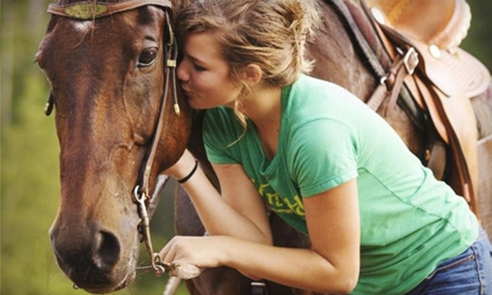 Haven Horse Ranch - St. Augustine: $30 for a 90-Minute Trail Ride and Lesson at Haven Horse Ranch ($75 Value)
