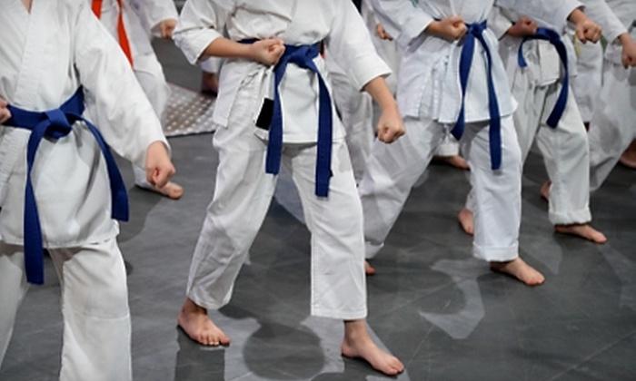 Katsujin Budokai - Lubbock: One Month or Entire Summer of Kids' Karate Classes at Katsujin Budokai