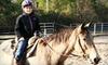 Splendor Farms - Bush: $60 for a Two-Hour Horseback Trail Ride for Two at Splendor Farms in Bush ($120 Value)