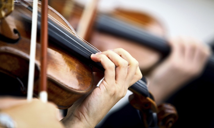The Violin Center - Cragin: 60-Minute Musical Instrument Lesson at The Violin Center (50% Off)