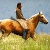 57% Off Horseback Ride & Wine Tasting in Temecula