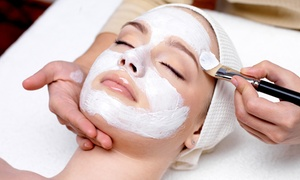 Master Creations Salon: One or Three European Facials or Microdermabrasion Sessions at Master Creations Salon (Up to 65% Off)