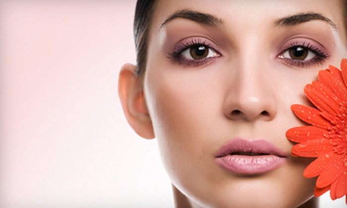 Salon Charis - Vista Grande: One or Three Microdermabrasions or 60-Minute Facials at Salon Charis (Up to 56% Off)