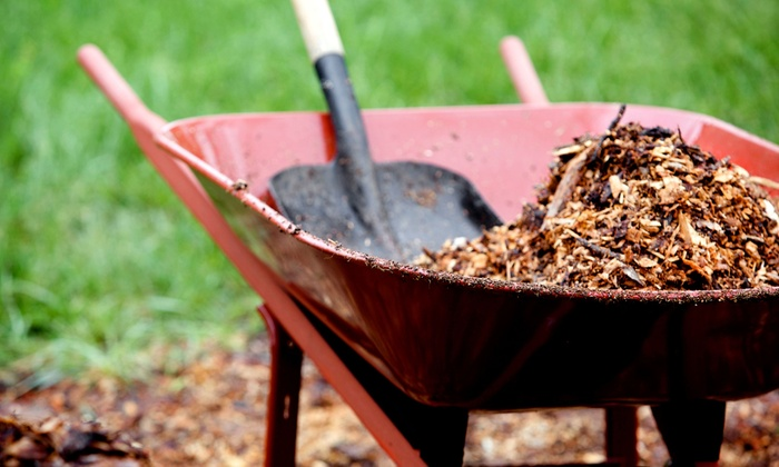 Green Thumb Lawn Care - Pittsburgh: Lawn Fertilization for Up to Half an Acre or $249 for $500 Worth of Landscaping Services from Green Thumb Lawn Care