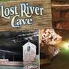 53% Off Lost River Cave Tour