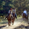 Up to 55% Off Trail Rides and National Park Passes