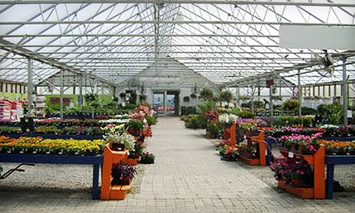 Colonial Classics - Newburgh: $25 for $50 Worth of Plants, Shrubs, and Gardening Supplies at Colonial Classics
