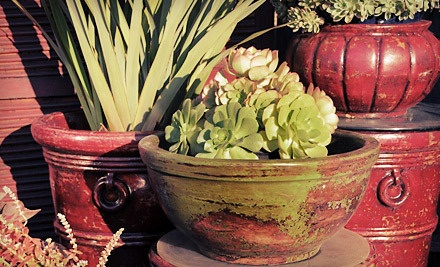 $50 Groupon to Jackalope Pottery - Jackalope Pottery in North Hollywood