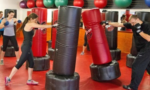 H.I.I.T. Kickboxing, Natick: 10-Class Pass or One Month of Unlimited Kickboxing Classes at H.I.I.T. Kickboxing (Up to 68% Off)