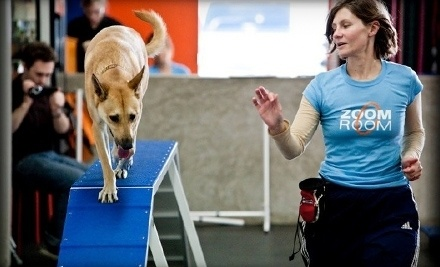 Single Dog-Training Drop-In Class - Zoom Room Claremont in Claremont