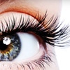 51% Off Lash Extensions at Lavish Lashes By Cathy