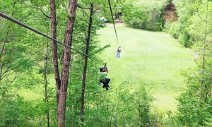 Carolina Ziplines Canopy Tour: Two-Hour Daytime or Twilight Tour for One, Two, or Four at Carolina Ziplines Canopy Tour (Up to 55% Off)
