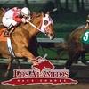 63% Off Horse Races in Los Alamitos