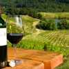 Up to 53% Off Winery-Tour Outings