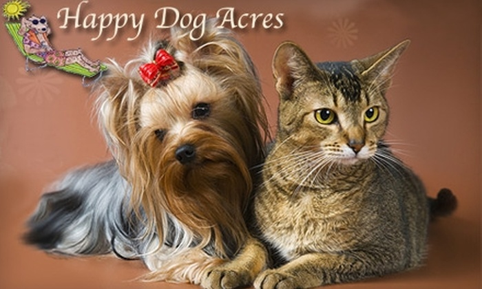 """Happy Dog Acres - Sutherland Industrial: $10 for Two Days of Doggie Day Care or $20 for """"King or Queen for a Day"""" Grooming Package at Happy Dog Acres"""