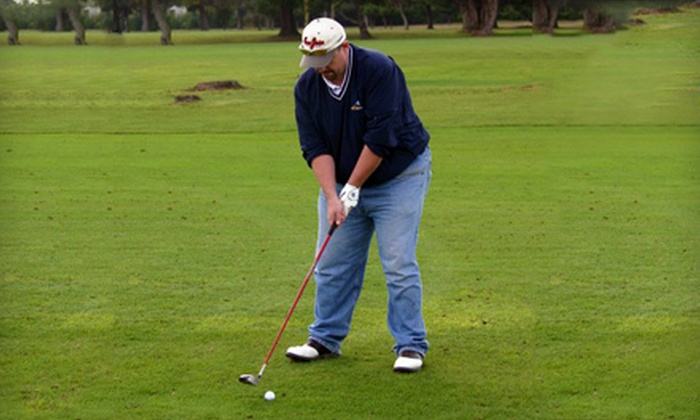 GolfSmarts - Stanford University: One or Three One-Hour Private Golf Lessons with Digital Copies at GolfSmarts in Santa Clara (Up to 62% Off)