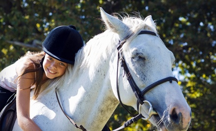 30-Minute Private Horseback-Riding Lesson (a $70 Value) - Featherbrook Farm in Corcoran