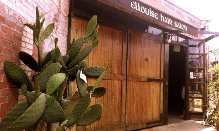Ellouise Hair Salon - South Arroyo: Haircut, Highlights, and Style from Ellouise Hair Salon (60% Off)