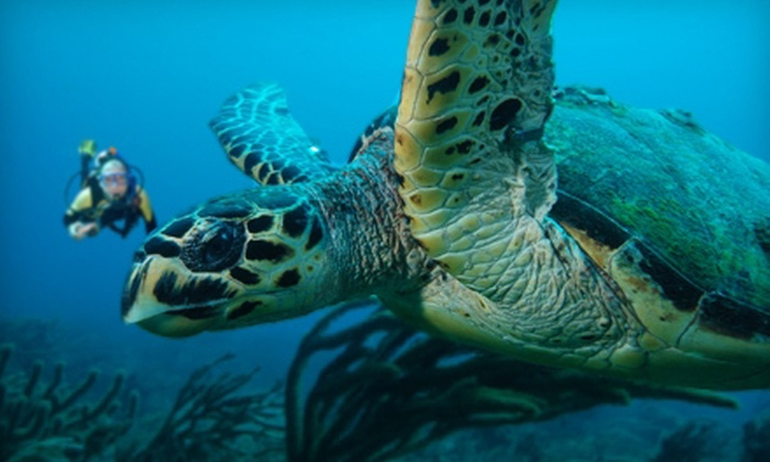 The Scuba Club - North Palm Beach: $75 for a Two-Tank Boat-Dive Trip from The Scuba Club (Up to $157 Value)