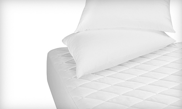 Mites Out Marin - San Francisco: $40 for a Mattress Sanitization from Mites Out Marin (Up to $79 Value)