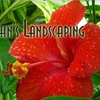 Up to 71% Off Landscaping and Design
