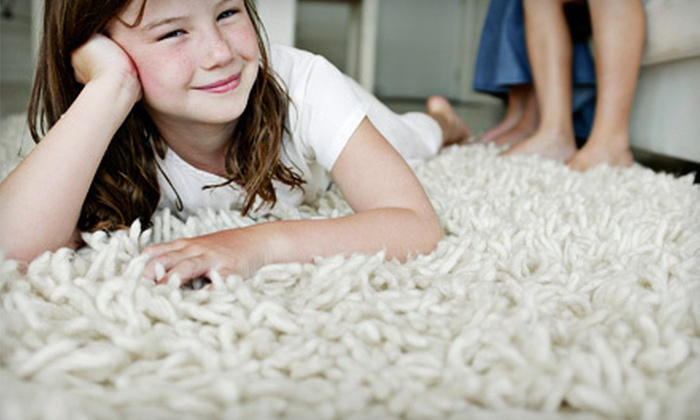 Professional Carpet Care - 11: Carpet Cleaning from Professional Carpet Care (Up to 78% Off). Two Options Available.